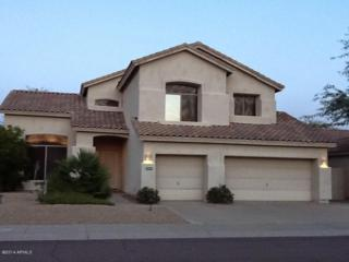 14357 N 99TH Street  , Scottsdale, AZ 85260 (MLS #5212193) :: Quantum of Arizona, REALTORS