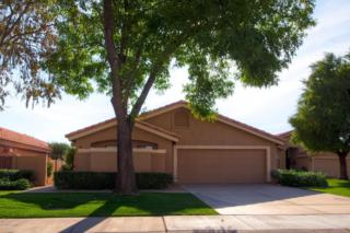 9549 E Windrose Drive  , Scottsdale, AZ 85260 (MLS #5212494) :: Arizona Best Real Estate