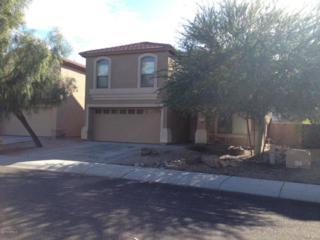 2411 W Lucia Drive  , Phoenix, AZ 85085 (MLS #5212938) :: Keller Williams Legacy One Realty