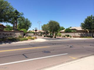 2748 W Harrison Place  , Chandler, AZ 85224 (MLS #5213223) :: Arizona Best Real Estate