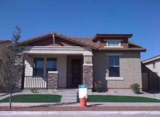 3472 E Jasper Drive  , Gilbert, AZ 85296 (MLS #5213399) :: Morrison Residential LLC