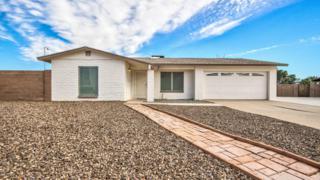 19011 N 13th Drive  , Phoenix, AZ 85027 (MLS #5216408) :: Quantum of Arizona, REALTORS