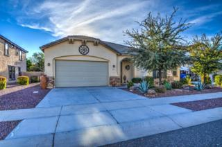 25818 N Sandstone Way  , Surprise, AZ 85387 (MLS #5223349) :: Morrison Residential LLC