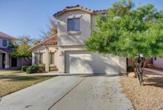 9462 N 94TH Lane  , Peoria, AZ 85345 (MLS #5224787) :: The Carin Nguyen Team
