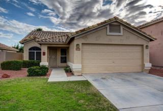 7439 W Louise Drive  , Glendale, AZ 85310 (MLS #5225955) :: The Carin Nguyen Team