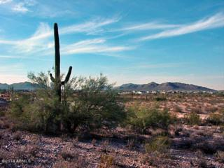 2526 W Wahissa Trail  , Queen Creek, AZ 85142 (MLS #5226408) :: West USA Realty Revelation