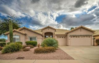 8897 E Captain Dreyfus Avenue  , Scottsdale, AZ 85260 (MLS #5226605) :: Morrison Residential LLC