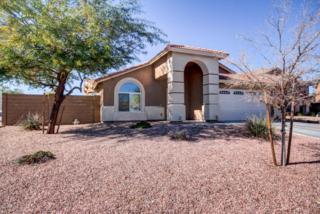 9706 N Pembroke Court  , Waddell, AZ 85355 (MLS #5228580) :: Morrison Residential LLC