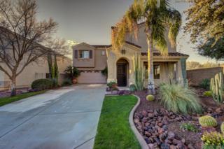 17639 W Hearn Road  , Surprise, AZ 85388 (MLS #5228611) :: Keller Williams Legacy One Realty