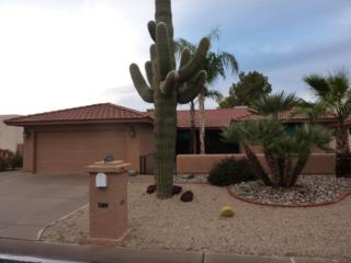 26006 S Cloverland Drive  , Sun Lakes, AZ 85248 (MLS #5230434) :: West USA Realty Revelation