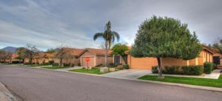 13245 N 94TH Way  , Scottsdale, AZ 85260 (MLS #5230491) :: Morrison Residential LLC