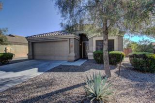 14711 N 130TH Lane  , El Mirage, AZ 85335 (MLS #5242874) :: Morrison Residential LLC