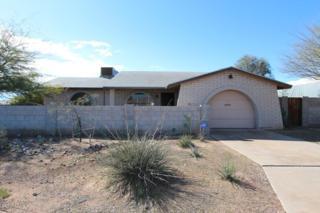 9817 W Sunbird Drive  , Arizona City, AZ 85123 (MLS #5244522) :: Keller Williams Legacy One Realty