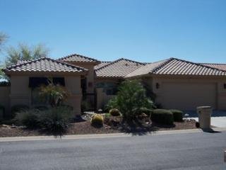 24207 S Briarcrest Drive  , Sun Lakes, AZ 85248 (MLS #5245354) :: West USA Realty Revelation