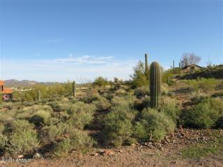 5084 E Singletree Street  , Apache Junction, AZ 85119 (MLS #5245849) :: Keller Williams Legacy One Realty