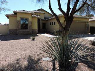43951 W Windrose Drive  , Maricopa, AZ 85138 (MLS #5246109) :: West USA Realty Revelation