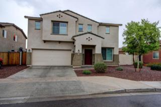 3424 W La Mirada Drive  , Laveen, AZ 85339 (MLS #5252629) :: The Carin Nguyen Team