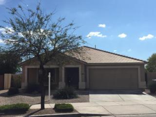 22319 E Calle De Flores  , Queen Creek, AZ 85142 (MLS #5253613) :: The Daniel Montez Real Estate Group