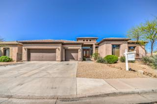 5300 S Dragoon Drive  , Chandler, AZ 85249 (MLS #5255600) :: Carrington Real Estate Services