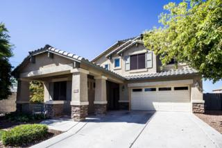 24716 N 28TH Place  , Phoenix, AZ 85024 (MLS #5255975) :: The Daniel Montez Real Estate Group