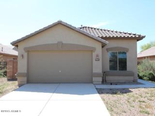 41647 W Cheyenne Court  , Maricopa, AZ 85138 (MLS #5256164) :: West USA Realty Revelation