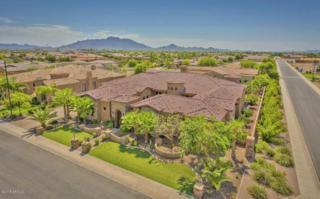 4301 E Taurus Place  , Chandler, AZ 85249 (MLS #5256267) :: West USA Realty Revelation
