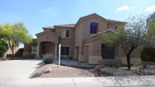 527 W Desert Flower Lane  , Phoenix, AZ 85045 (MLS #5256324) :: West USA Realty Revelation