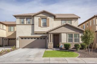 9213 S Beck Avenue  , Tempe, AZ 85284 (MLS #5256492) :: West USA Realty Revelation
