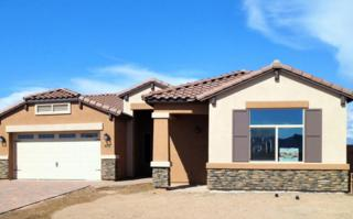22314 E Via Del Verde Way  , Queen Creek, AZ 85142 (MLS #5257162) :: West USA Realty Revelation