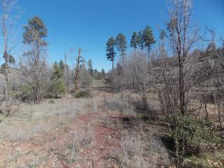 855  Wildcat Trail S , Linden, AZ 85901 (MLS #5257405) :: The Carin Nguyen Team