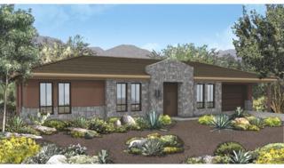 11654 E Desert Holly Drive  , Scottsdale, AZ 85255 (MLS #5257410) :: The Carin Nguyen Team