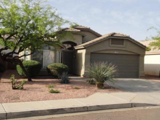 2729 E Hartford Avenue  , Phoenix, AZ 85032 (MLS #5266198) :: Quantum of Arizona, REALTORS
