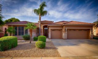 6819 W Skylark Drive  , Glendale, AZ 85308 (MLS #5267400) :: Quantum of Arizona, REALTORS