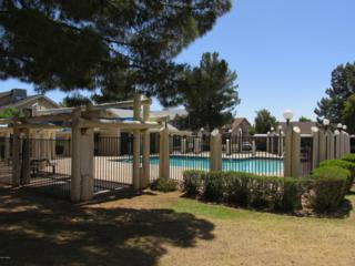 2455 E Broadway Road  120, Mesa, AZ 85204 (MLS #5268602) :: Quantum of Arizona, REALTORS