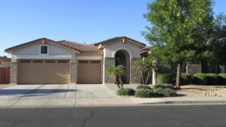 544 E Elgin Court  , Gilbert, AZ 85295 (MLS #5268605) :: Quantum of Arizona, REALTORS