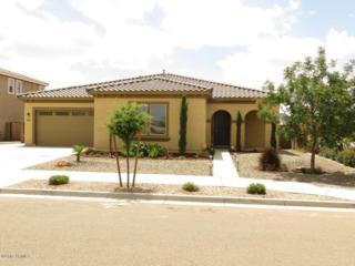 21003 E Via De Arboles  , Queen Creek, AZ 85142 (MLS #5271041) :: West USA Realty Revelation