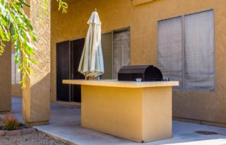 10998 S Turtle Dove Drive  , Goodyear, AZ 85338 (MLS #5271677) :: Morrison Residential LLC