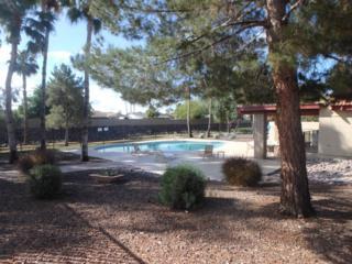18410 N 25TH Street  , Phoenix, AZ 85032 (MLS #5271678) :: Morrison Residential LLC