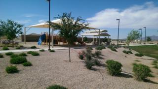 2849 E Quenton Street  , Mesa, AZ 85213 (MLS #5271726) :: Morrison Residential LLC