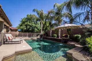 18647 E Lark Drive  , Queen Creek, AZ 85142 (MLS #5272748) :: The Daniel Montez Real Estate Group