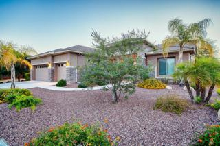 5202 W Cavedale Drive  , Phoenix, AZ 85083 (MLS #5273203) :: Keller Williams Legacy One Realty