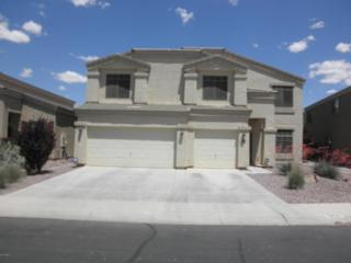 19159 N San Pablo Street  , Maricopa, AZ 85138 (MLS #5275234) :: West USA Realty Revelation