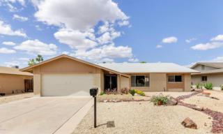 5220 W Hearn Road  , Glendale, AZ 85306 (MLS #5277240) :: Quantum of Arizona, REALTORS