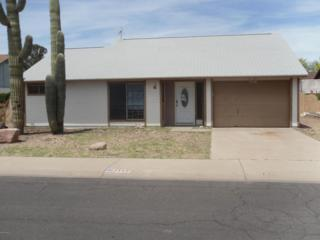 7148 W Mclellan Road  , Glendale, AZ 85303 (MLS #5279714) :: Carrington Real Estate Services