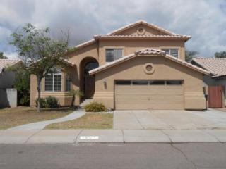 20214 N 29TH Place  , Phoenix, AZ 85050 (MLS #5281420) :: Carrington Real Estate Services