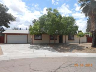 15839 N 19TH Street  , Phoenix, AZ 85022 (MLS #5284566) :: Carrington Real Estate Services