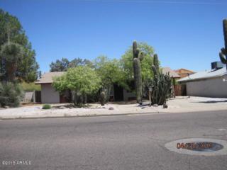 17037 N 15TH Avenue  , Phoenix, AZ 85023 (MLS #5284598) :: Carrington Real Estate Services