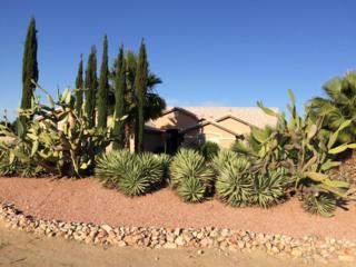 8227 N Citrus Road  11, Waddell, AZ 85355 (MLS #5284696) :: Carrington Real Estate Services