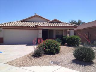 2333 W Oberlin Way  , Phoenix, AZ 85085 (MLS #5284697) :: Quantum of Arizona, REALTORS