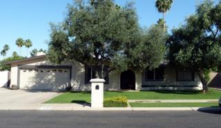 2365 W Via Rialto Avenue  , Mesa, AZ 85202 (MLS #5284702) :: Quantum of Arizona, REALTORS